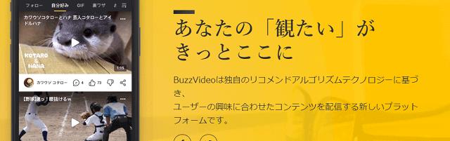 Buzz Video(バズビデオ)